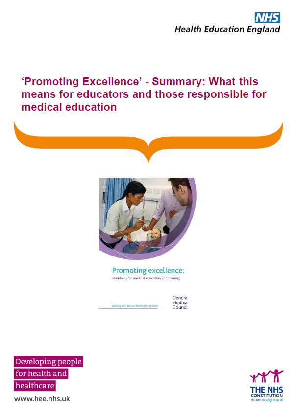 Promoting Excellence Summary