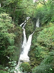 Stock Ghyll by Flickr User Foshie